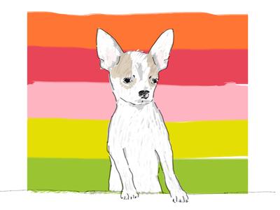 Chihuahua, Custom Art