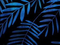 Tropical Botanical Design