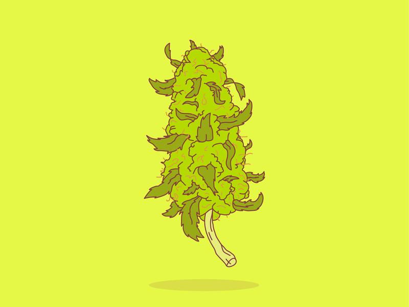Floating Nug nebraska cartoon pencil pencil drawing vector design colors nugget poster cannabis branding high creative hand drawn illustration crumby floating weed marijuana nug cannabis