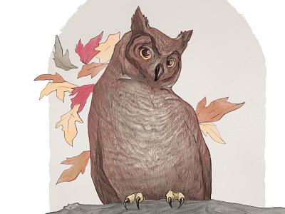 Great-Horned Owl Illustration procreate app new york city nyc new york ecommerce owls birding birds nature colorized digital hand-drawn pencil procreate illustration drawing