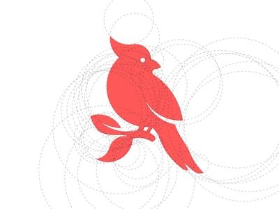 Bird with Golden Retio