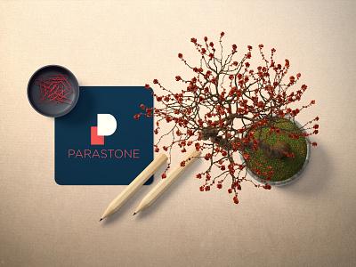 PARASTONE LOGO CONCEPT clean typography illustrator illustration identity art logo branding brand
