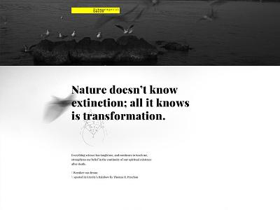 Gravity's Rainbow. Digital poster. white black typography moscow санкт-петербург saint-petersburg niketo