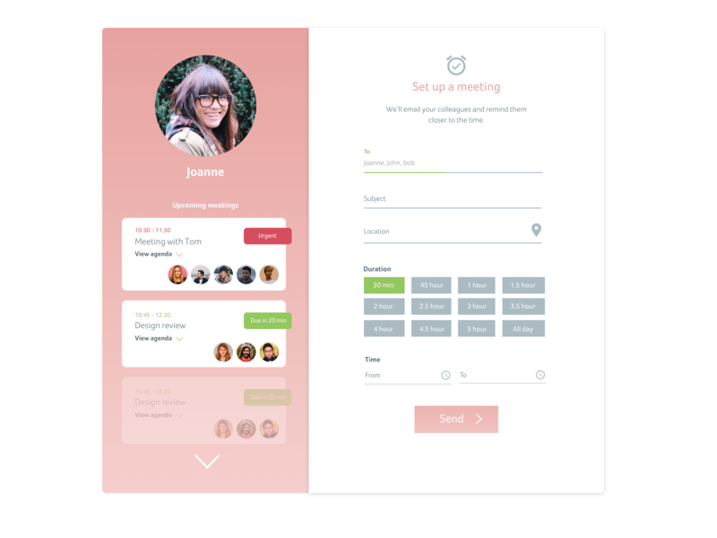 Schedule a Meeting UI form elements form design clean sketch app user interface meetings schedule meeting app ui