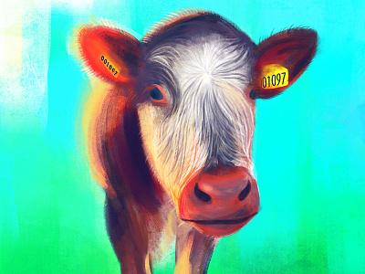 Cow No. 001097 ipad pencil ipad pro cambridge england cow