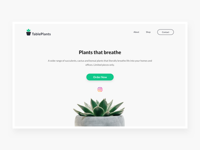 TablePlants indoor minimalism green tableplants plants page landing