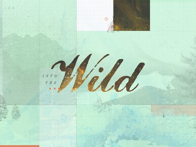 Into the Wild shopindie nature guide camping gift gifts shop indie