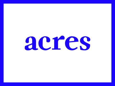 Acres serif weird custom type fuzzco