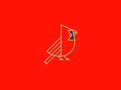 Cardinalis cardinalis birds cardinals