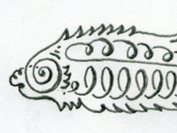 Roly-poly Fish Head