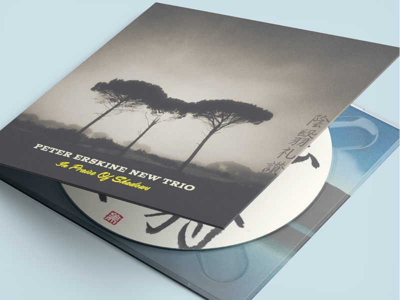 Peter Erskine Trio – In Praise of Shadows branding packaging design graphic design music typography cover art album artwork album cover