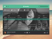 Spotify fullsize