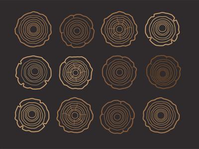 Wood Slice nature outdoors pattern illustration slice wood