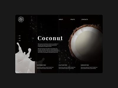 Coconut planet web ux ui shot design dribbble concept