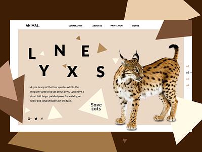 Love cats;) dailyui website web ux ui shot dribbble design concept