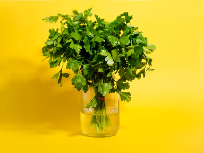 Parsley photography
