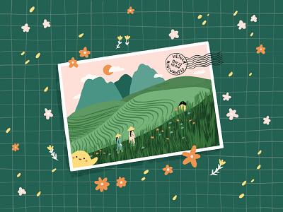 Postcard from Vietnam dribbbleweeklywarmup flowers fields rice fields asia vietnam travel postcard