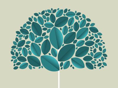 Tree foliage nature environment grow leaves leaf tree