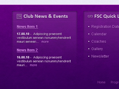 Skating Club Footer texture footer web site purple links