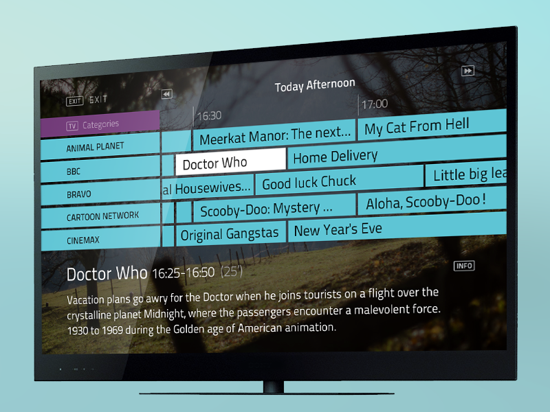 Iptv With Guide