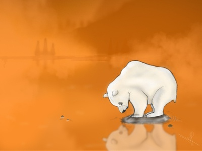 Bear   Global warming
