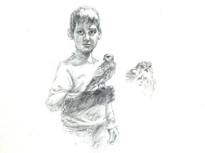 Young Falconer falcon boy drawing sketch pencil