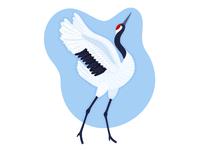 Red-Crowned Crane (Japanese crane) species endangered japanese japan crane bird animal ipad pro character vector illustration design