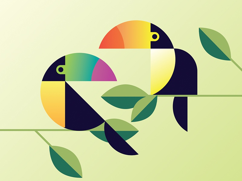 Two Cans geometric vector rainforest toucan summer tropical