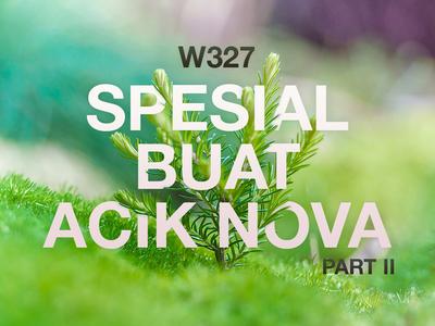 Special for Aunt Nova 2