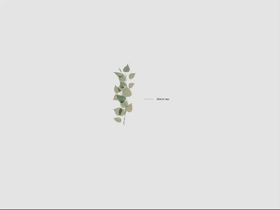 Hover Collage Animation webdevelopment hover effect hover animation collage art leaf flower bird coding gsap interactive interaction collage hover nature animation illustration design