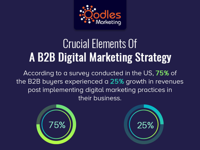 USA B2B Digital Marketing Strategy | Oodles Marketing