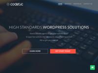 Codetic Website Redesign