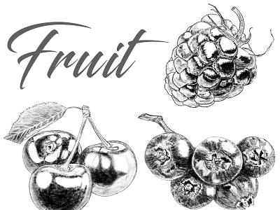 Fruit иллюстратор typography illustration art black  white fruit illustration