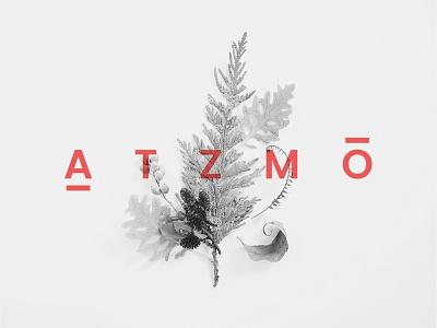 ATZMO design logo logo design naming branding