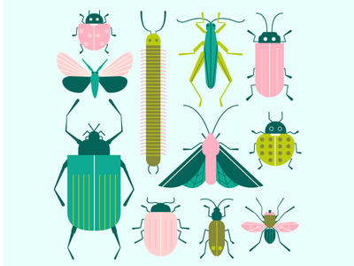 Insects moth animals centipede ladybug beetle fly grasshopper butterfly bugs insects