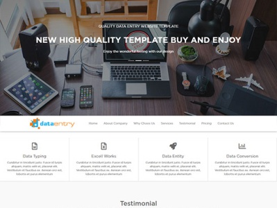 data entry website templates
