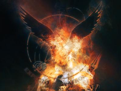 Expecto Patronum - Phoenix