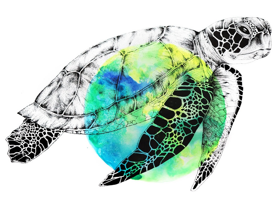 Stippled Sea Turtle Over Watercolor ocean dotwork dots inking micron pen pen and ink mixed media neon paint neon colors turtle animal illustration painting watercolor painting sea turtle pointillism stippling drawing watercolour watercolor illustration