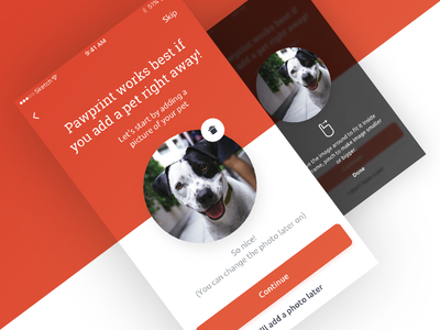 Pawprint App - Add photo onboarding photo pet app pawprint ios android react native