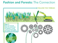 Canopy infographic full size
