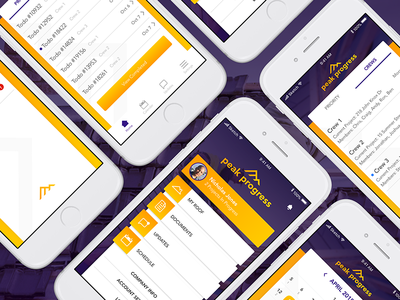 Peak Progress Mobile App ui ux app design mobile app user interface ui design