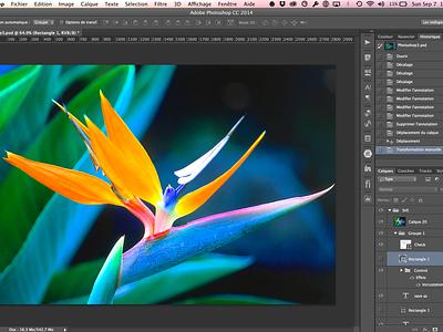 Photoshop redesign flat photoshop redesign yosemite flower sketch adobe dark clean simple layers history