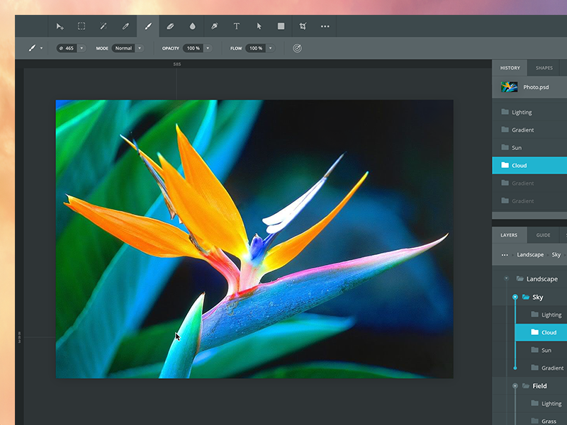 Photoshop redesign flat photoshop redesign yosemite flower sketch adobe dark clean simple layers history