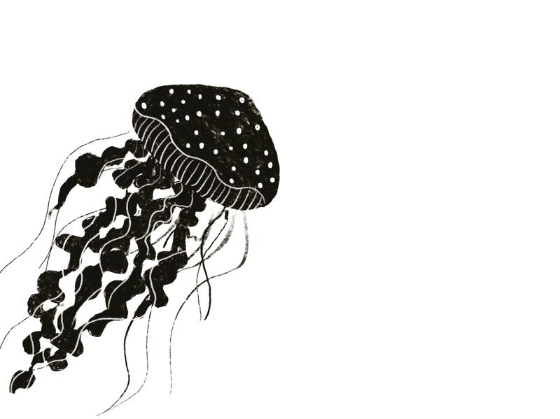 Jellyfish black and white vectorart animal illustration tshirt design cute animal illustrator poster design poster art design banner cute illustration uidesign illustration art branding concept illustration