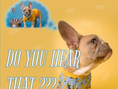 Do you hear that? - Social Media Visual pet shop pet food pet store food bones funny social media pet visual design colorful