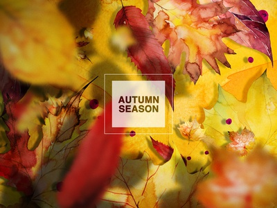 Autumn Background #2