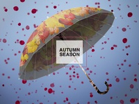 Autumn Background #5