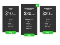 Pricing Ui #030
