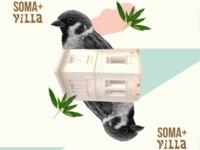 SOMA+VILLA MUSIC FESTIVAL