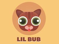 Lil' Bub